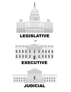 The Republican Party Now Holds Overwhelming Influence on All 3 Branches of Government
